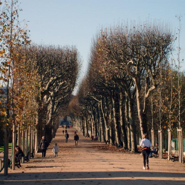 Autumn park in Paris