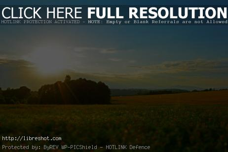 Free image of Meadow At Sunset