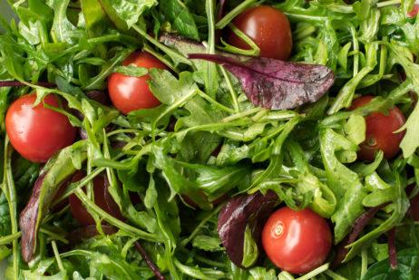 Free Image: Fresh Salad | Libreshot Public Domain Photos