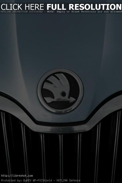 Škoda Auto Emblem | Free Images For Commercial Use