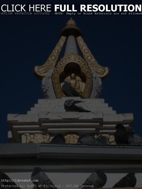 Buddhist stupa and pigeons