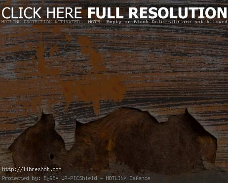 Orange Rusty Metal
