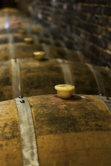 Free Image: Oak Wine Barrels | Libreshot Free Fine Art Photos