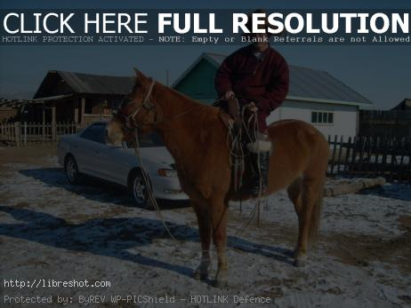 Mongolian man riding a horse