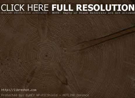 Beautiful Wood Structure