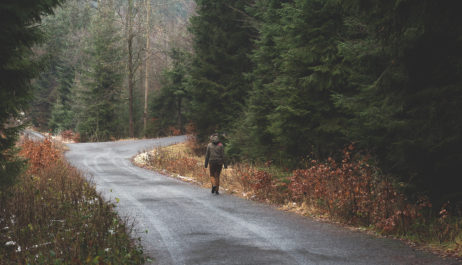 Free image of Woman alone in the woods