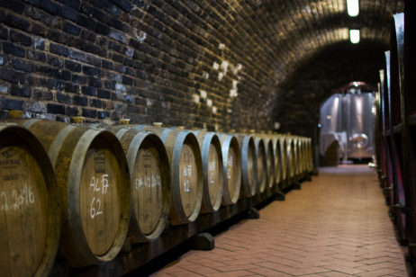 Free Image: Wine Barrels In Wine Cellar | Libreshot Public Domain Photos