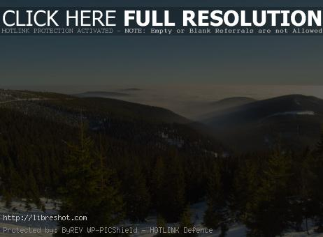 Free image of Winter Landscape