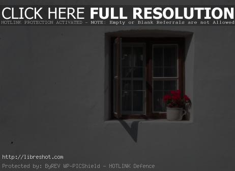 Vintage window with red flowers on white wall