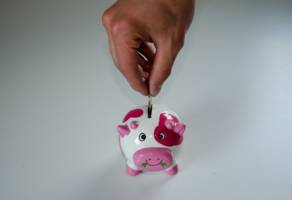 save, piggy bank, money