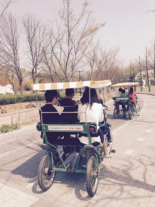 picnic, bike, family