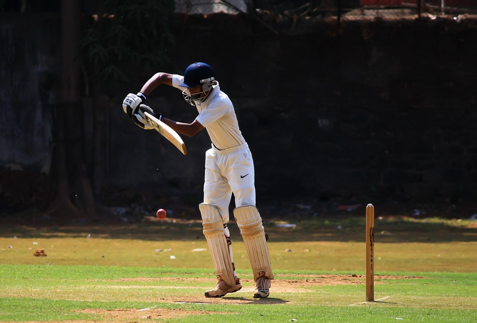 batsman, cricket, defense