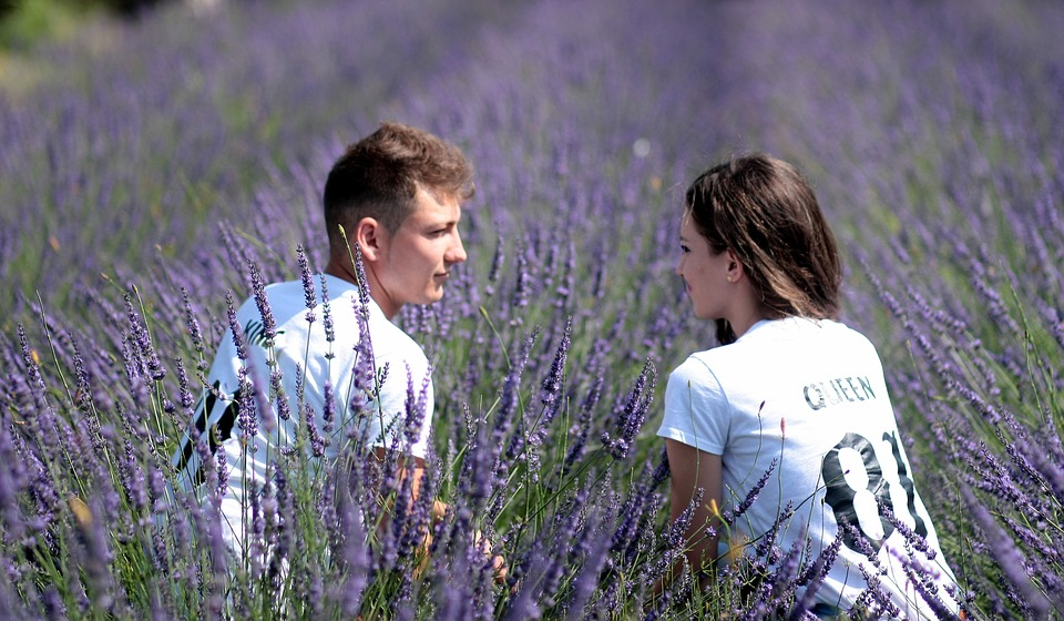 couple, lavender, love