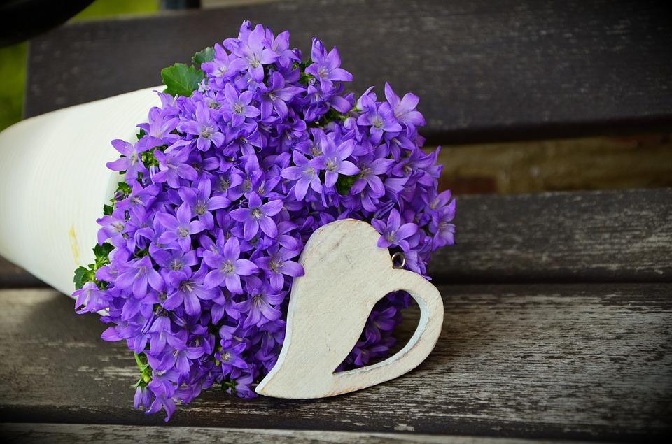 flowerpot, flower purple, mother\'s day