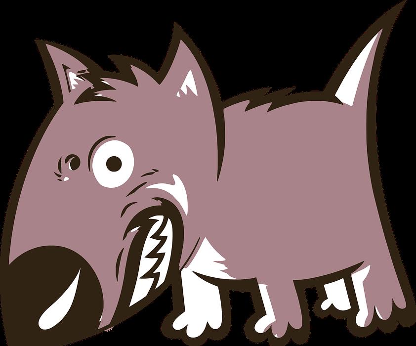 angry, animal, canine