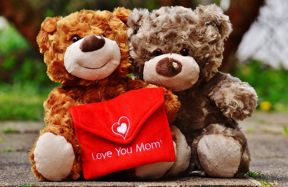 teddy, mother\'s day, love