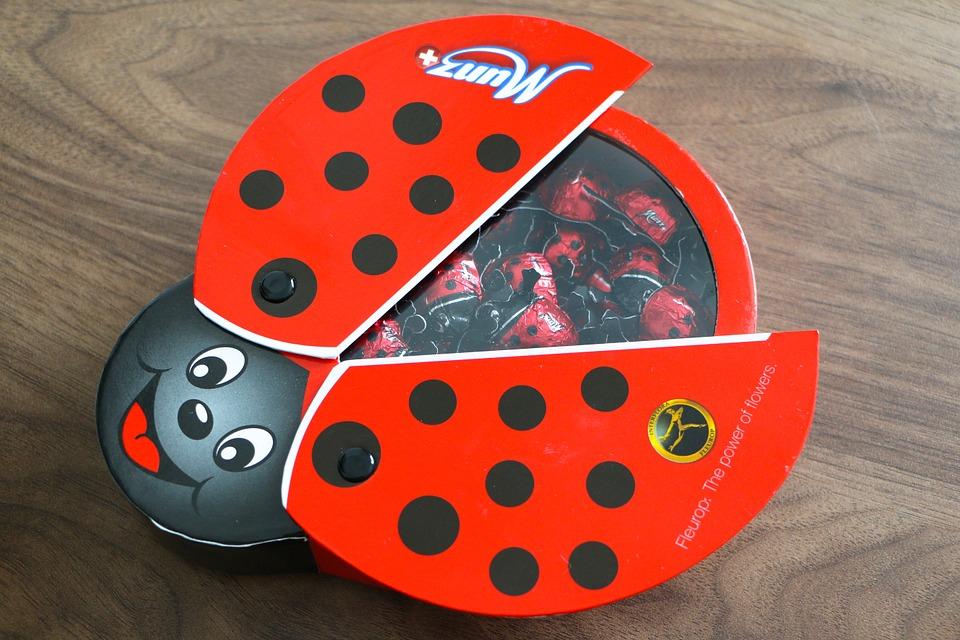 box, ladybug, spotted