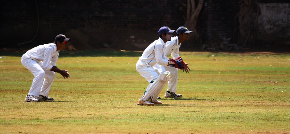 cricket, wicket, keeping
