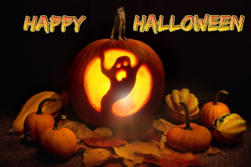 pumpkin, lit, halloween