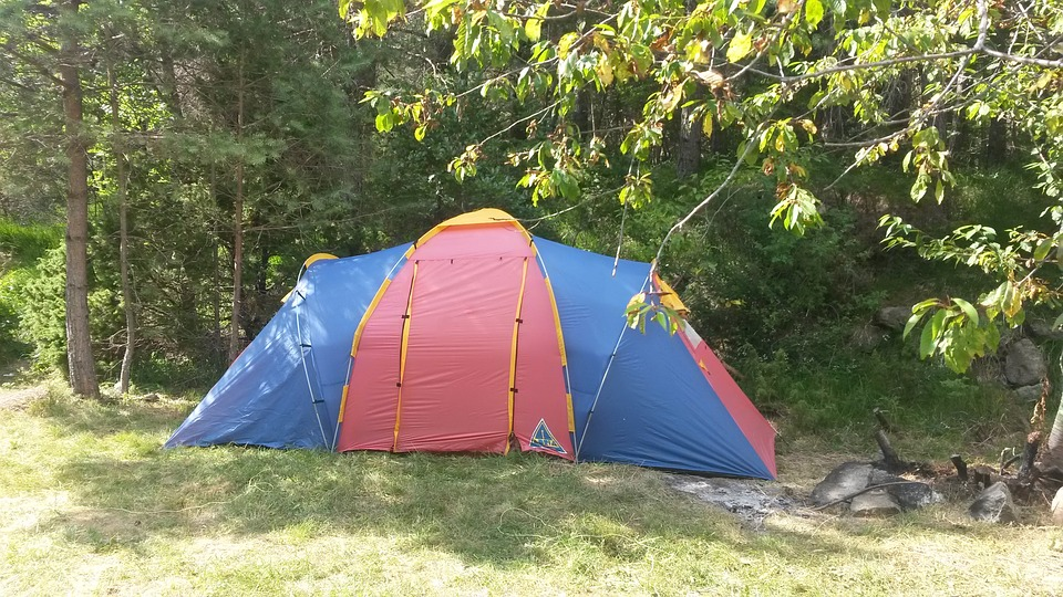 camping, tent, forest