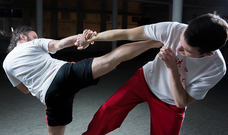 kung fu, fighting, martial arts