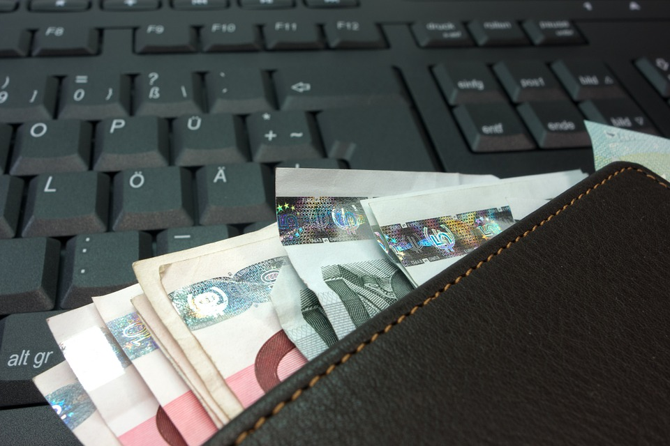 money, purse, bank note