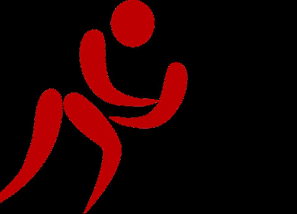 wrestling, sport, fight