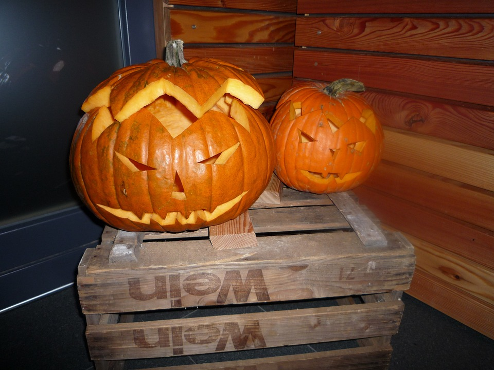 halloween, pumpkins autumn, orange