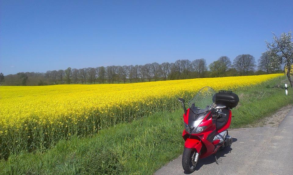 motorcycle, oilseed rape, field