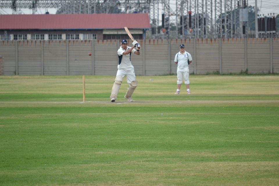 cricket, sport, drive