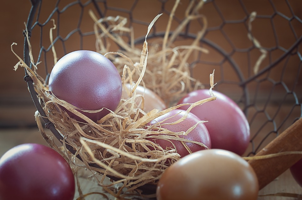 easter eggs, colorful, colored