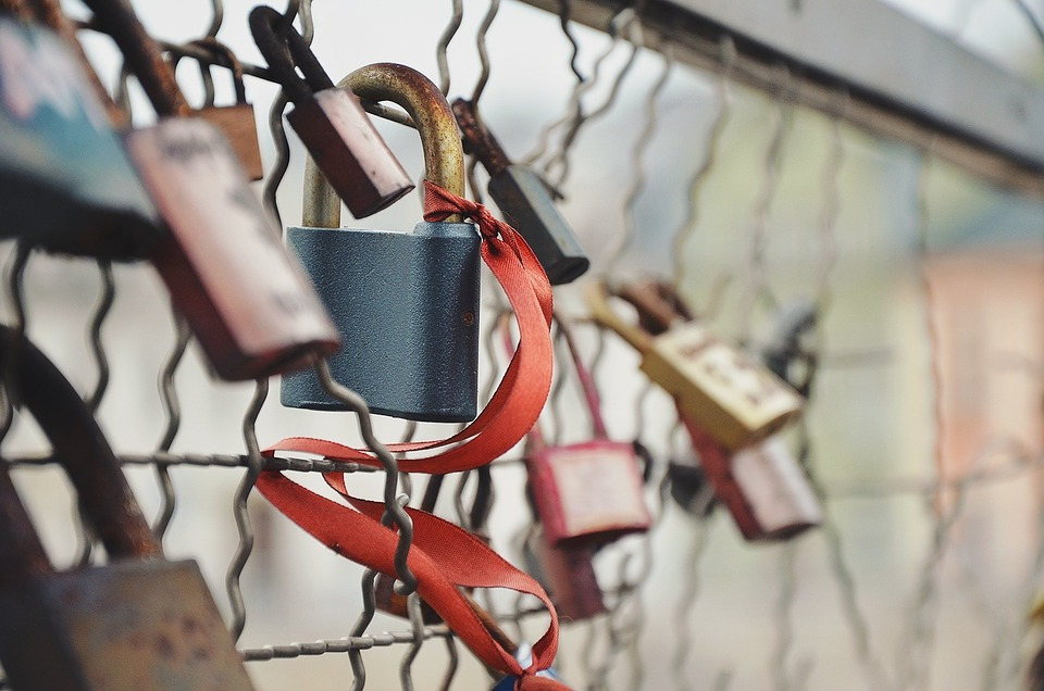 chain link fence, locks, locked