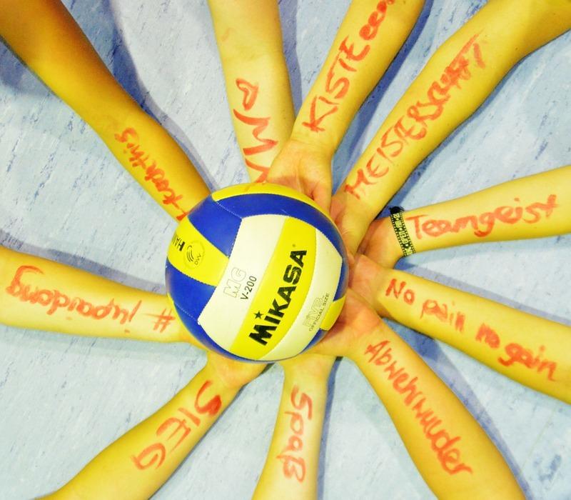 volleyball, team, team sport