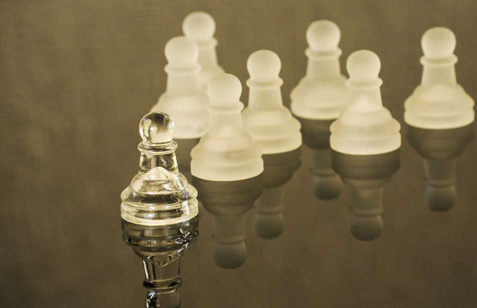 leadership, leader, chess