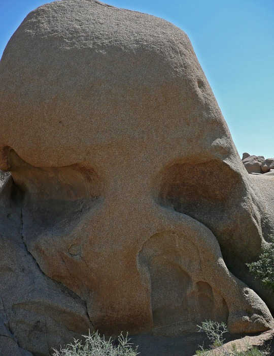 skull rock, joshua tree national park, tourist attraction
