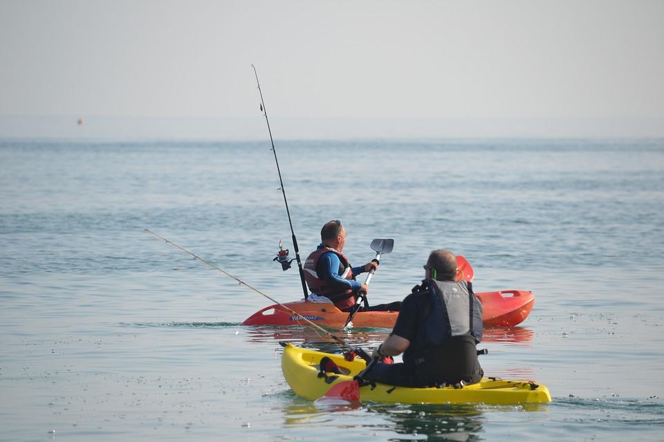 kayak, canoe, paddles