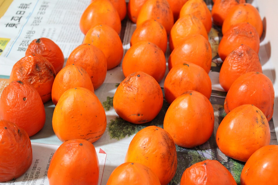 korea, persimmon, fruit