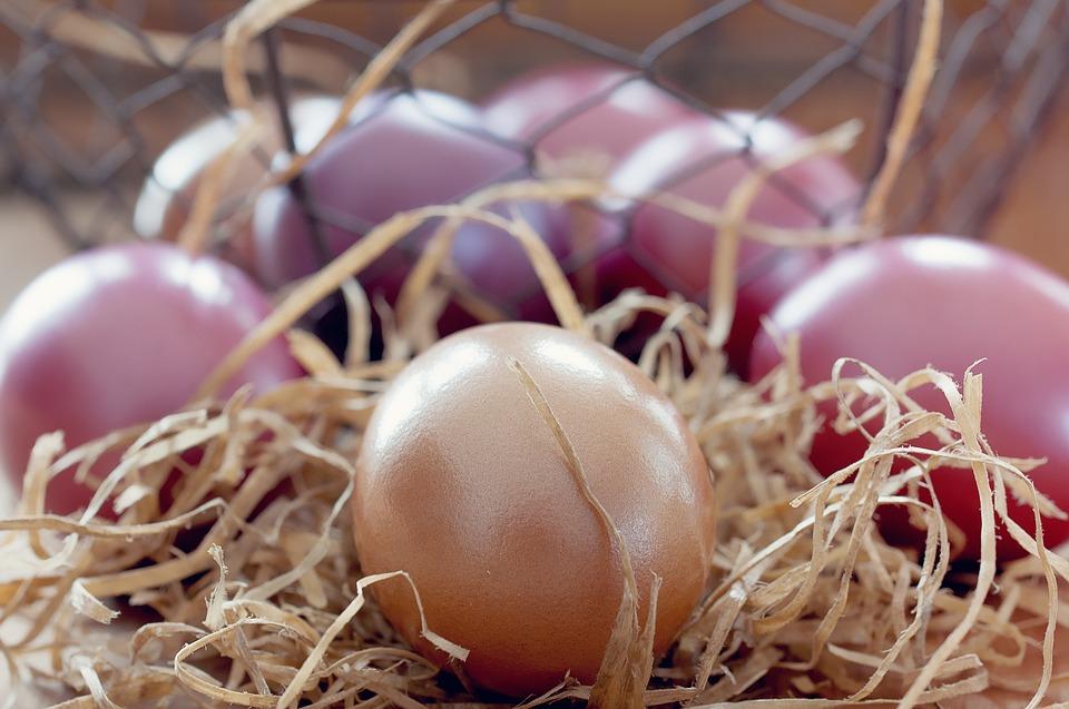 easter eggs, egg, colorful