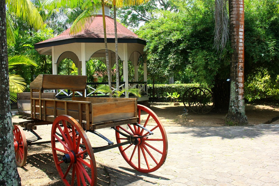 horse cart, colonial, plantantation