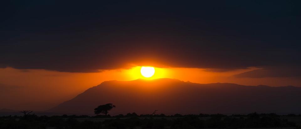 africa, sunset, safari