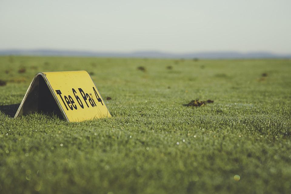 golf, golf ball, golfer