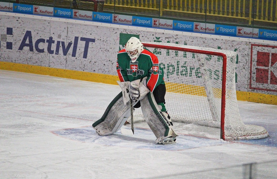 hockey, goalkeeper, mshkm skalica