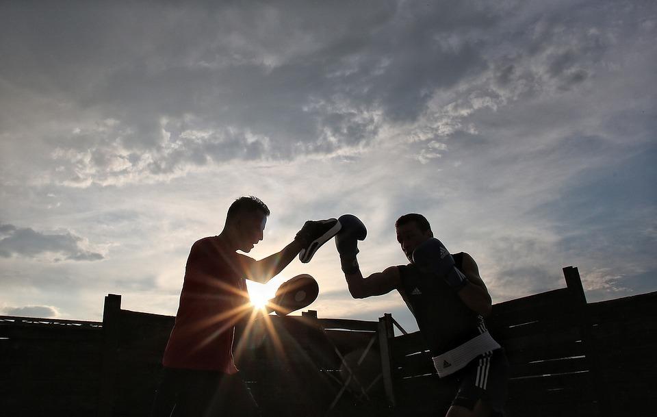 sport, box, training