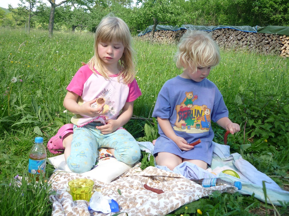 children, picnic, brothers and sisters