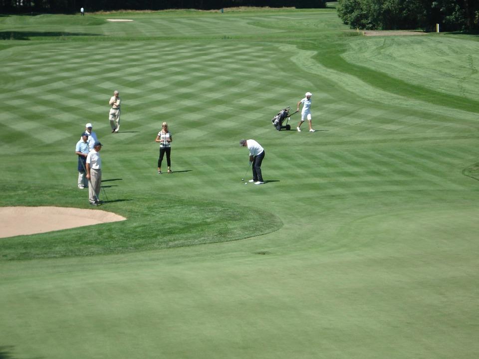 golf, golfers, fairway