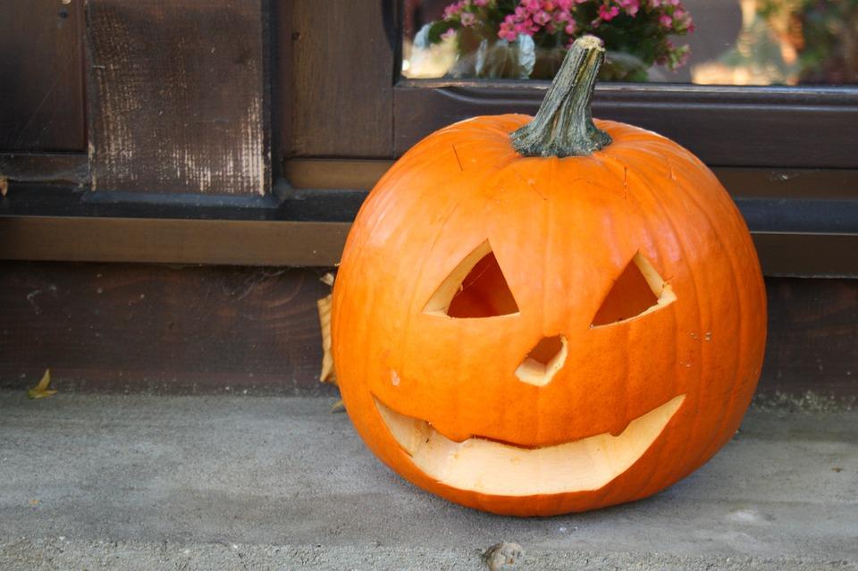 pumpkin, halloween, orange