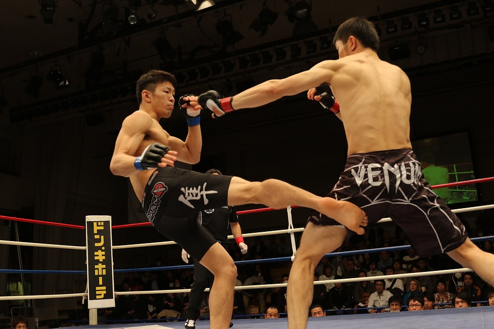 mma, mixed martial arts, japan