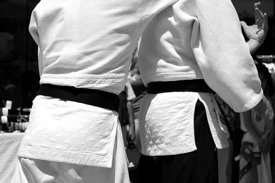 martial arts, aikido, japan