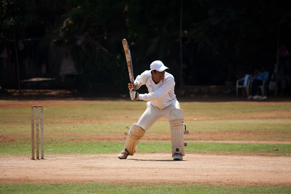 cricket, batsman, sports