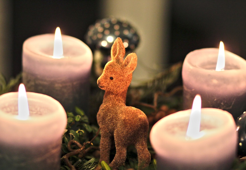 advent wreath, candles, roe deer